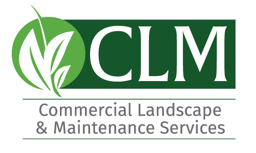Commercial Landscape and Maintenance Services