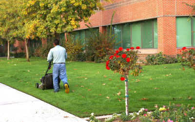 Water Saving with Commercial Landscapes
