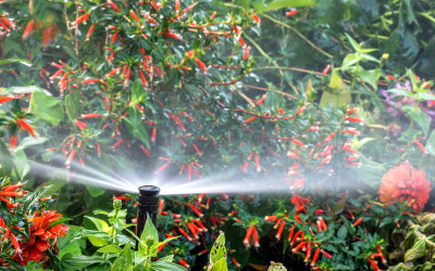 Your Sprinkler Could Get You Into Serious Trouble