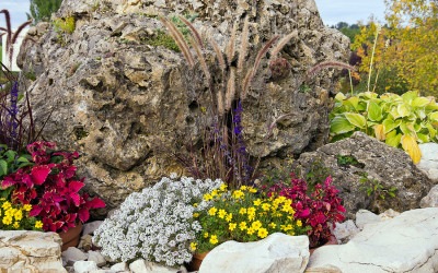 A Rock Garden for Efficient Use of Space and Water